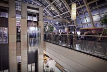 KaDeWe Le Buffet Wintergarten / Die Marke KaDeWe - seit über 100 Jahren. Die gigantische Produktvielfalt, Luxuriöses und Außergewähnliches locken bis zu 100.000 Kunden aus aller Welt ins KaDeWe. Feiern Sie nach Ladenschluß exklusive Empfänge und Partys in der 7. Etage, direkt unter dem Himmel von Berlin im Le Buffet Wintergartenrestaurant. Sein spektakuläre Dachkonstruktion, der Blick über Berlin, das Fresh- und Frontcocking Buffet und seine Bar machen Ihre Event zu einem einmaligen Erlebnis.