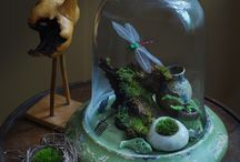 Terrariums and Bell Jars