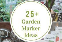 Thrifty gardening ideas