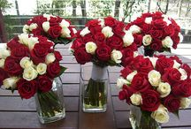 Red & white wedding / someday...
