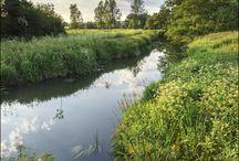 Creek Sussex