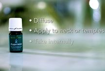 Essential Oils from Young Living