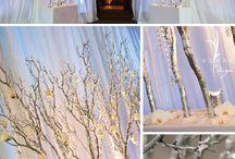 Winter wonderland / by Santa Ryan