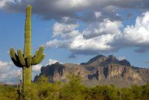 Our Phoenix, AZ