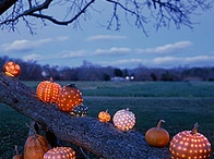 Spook by Lily-Flame / Spook is the scent of pumpkins, and warm pie crust, a hearty splodge of custard and a sweet treat for Halloween. Autumn celebrations, long, dark evenings and fun are all wrapped up in this delicious candle scent.  www.lily-flame.co.uk