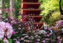 Japon: temples et religion