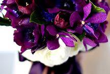 ~*~Lambertson/Sherrell Wedding~*~ / by Tabitha Sherrell