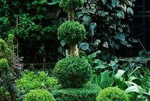 Gardens & more