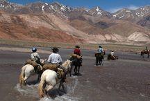 Les 5 plus belles aventures à cheval 2014