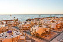 Wedding Reception - Venue Ideas