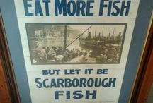 Scarborough / All about Scarborough
