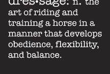 Dressage / Dressage ˈdrɛsɑː(d)ʒ/ noun the art of riding and training a horse in a manner that develops obedience, flexibility, and balance.