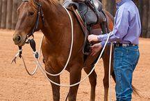 cowboys & their horse.