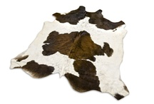 Stock CowHide On Line! / Choose Your CowHide Right now!!! centralmission@gmail.com / by Mission Argentina