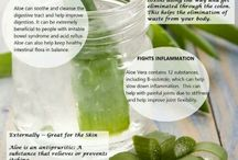 Aloe Vera Health Benefits