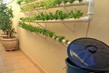 Ideias - vegetação, plantas, jardins / vegetação, plantas, jardins, deck