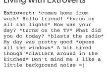 Extrovert/Introvert