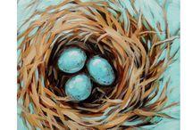 Obrázky - hniezdo