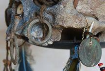 "Skull, ""Crane de curiosité"", création Jérôme Cavailles artiste / ""Amazonian skull"" for cabinet of curiosity...."
