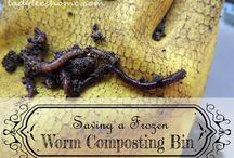 Gardening: compost
