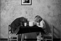 Wild Animals / by Rhonda Neuhaus