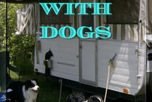 Camping With Dogs / Things you might want to know when thinking about camping with your dog or dogs.