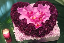 Valentine's Day / by Mayesh Wholesale Florist