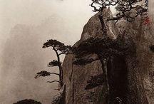 Artist - Oriental art