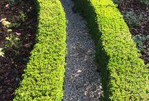 Venice garden / Venice garden esternidautore.com