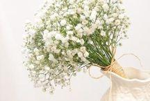 la bloom florist creation