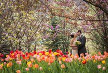 Pritzger Pavilion Millennium Park Wedding