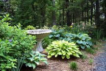 Projects to Try / Garden Ideas