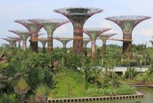 Jardins Verticais / Além de ser uma tendência de paisagismo, o modelo pode reduzir em até 30% os poluentes do entorno e aumentar a umidade do ar: http://abr.ai/1vj0G6a
