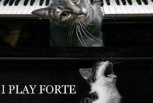 Music humour