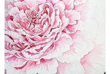 paintings of peonies