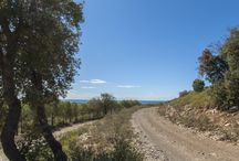 Frontignan, entre Mediterranée et Gardiole