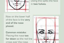 Anatomy Basics Tutorials