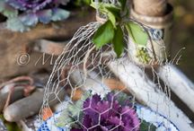 Event and Home Decor Ideas / by Dawn E Roscoe Photography
