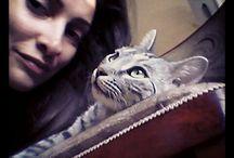 Tifani, my lovely cat