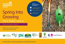 Spring into Growing 2016 / Plan it. Build it. Grow it! – Spring 2016  Start the new year afresh with a school garden fit for growing healthy food, learning skills and sharing knowledge, whatever the size or space. With our expert guidance, learn the secrets to planning and constructing your school garden, working with recycled materials and nature, and developing a productive growing space, with the help of your local community.
