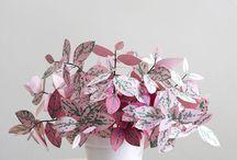 flores e plantas de papel