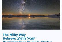 Israel lover