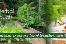 Online Herbal Products for Weight Loss