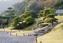 Japan div.