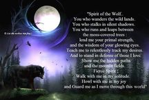 Wolves of the wild