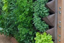 gardening:green