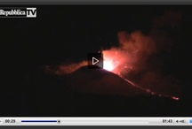 Nature: My works / Video reportage dal mondo della natura realizzati per diverse testate nazionali e locali