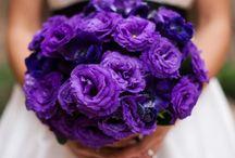 Wedding Ideas / by Marta King