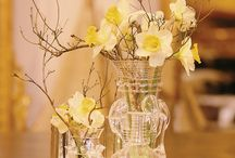 Wedding stuff I like but not for my wedding  / by Brittany Oliver