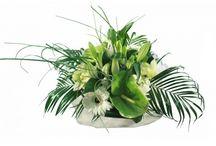 Compositions florales / De belles compositions florales disponibles sur des fleurs pour tous / by Des Fleurs Pour Tous